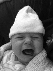 baby_graysky