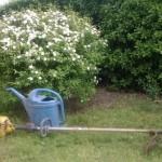 Il giardino e gli attrezzi maledetti